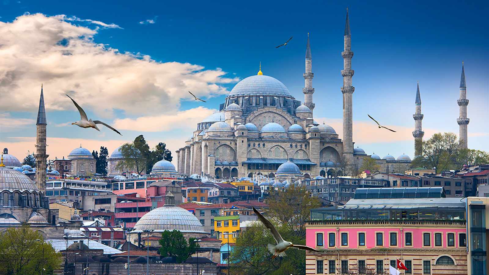 Istanbul_Turkey_Houses_Temples_Birds_Clouds_512150_1600x900