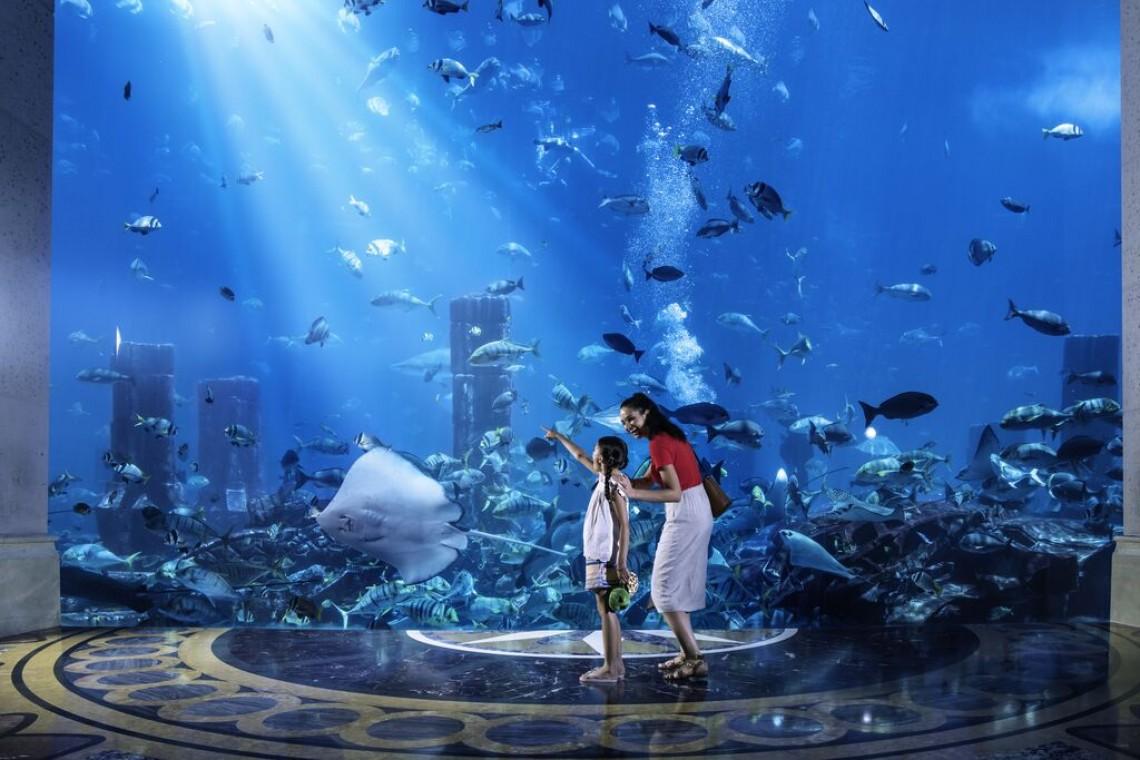 Large-DT_Family_Aquarium_AtlantisResort_1_HR